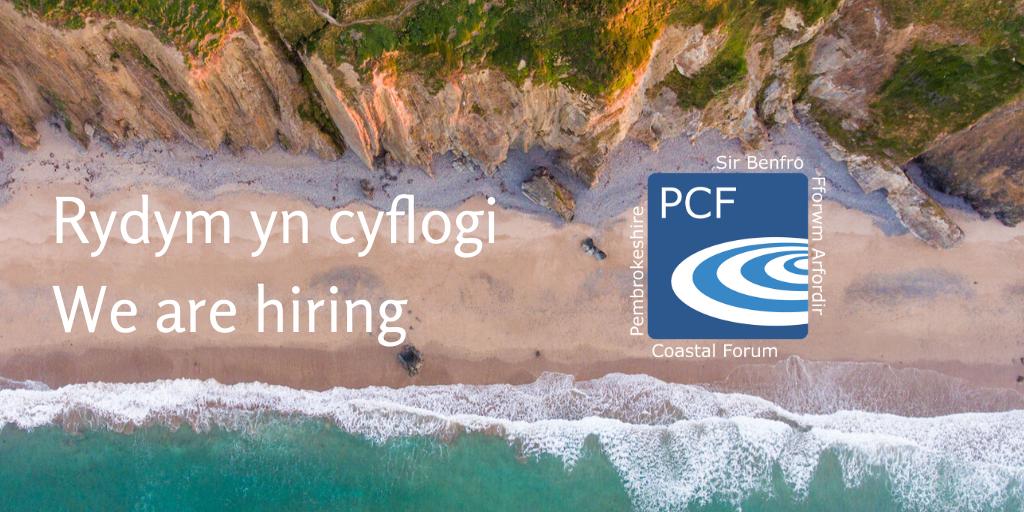 We are hiring – CEO / Rydym yn cyflogi – CEO