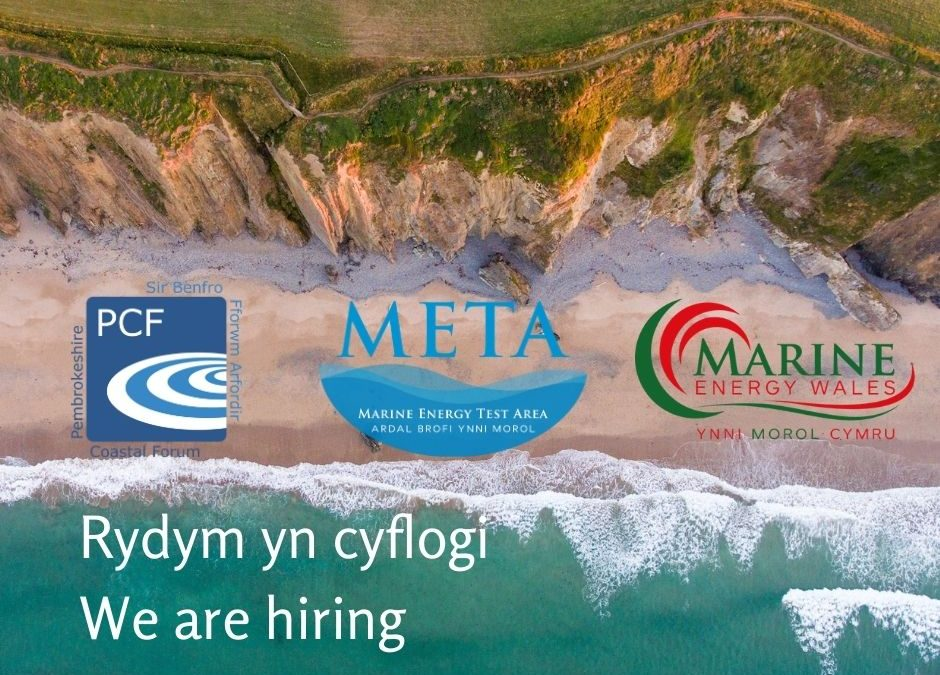 We are hiring – META Operations Manager